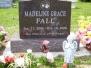 Maddie 1-Year Memorial